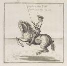 William Cavendish - Neueröffnete Reitbahn oder vollkommener Stallmeister
