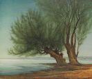 Lenk, Franz - Weiden am Wasser