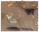 Willem de Kooning - Ohne Titel (2 Blätter)