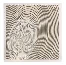 Jesús Raphael Soto - La spirale